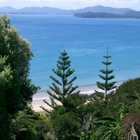 Waitata Bay Beach
