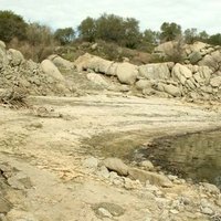 Bare Cove, Folsom Lake